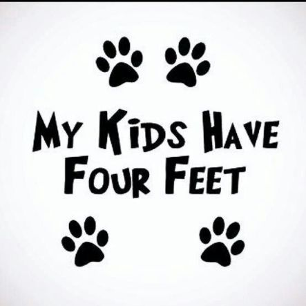 my kids have 4 feet