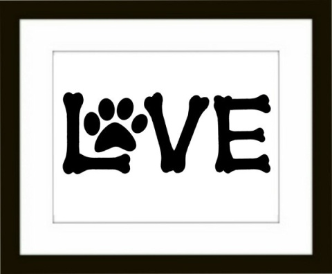Love-paws