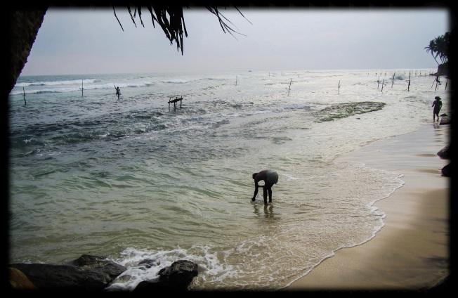 Fishermen - Sri Lanka